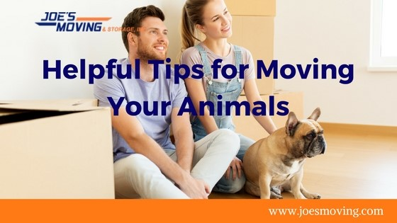 Helpful Tips for Moving Your Animals